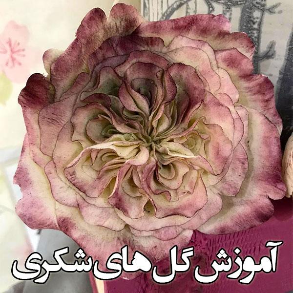 آموزش گل های شکری